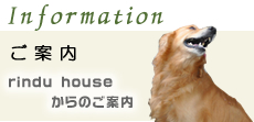 Rindu House|バリ島カルチャースクール〜宿泊〜大好きバリ!!